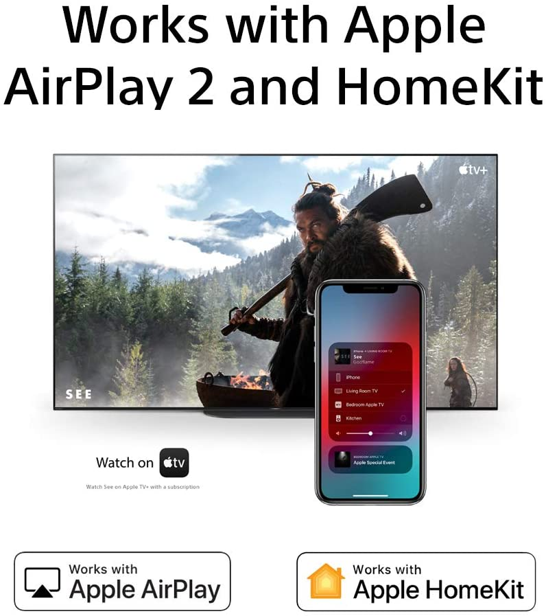 Works with Apple Airplay 2 Homekit